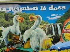 Reunion Island- Cilaos