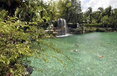 More than a place to swim, the Venetian Pool, carved out of a limestone quarry in a quiet neighborhood near the Biltmore Hotel, is the place to go to feel like an extra in an Esther Williams movie. The pool, operated by the city of Coral Gables, is drained nightly and filled each morning with more than 800,000 gallons of spring water, framed by lovely gardens that exude a tropical vibe. Admission: $11 adults, $7.35 children. (coralgablesvenetianpool.com)