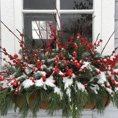 this is what my window box looks like now! this is what my window box looks like now! Winter Window Boxes, Christmas Window Boxes, Outside Christmas Decorations, Christmas Planters, Christmas Porch, Rustic Christmas, Christmas Lights, Christmas Wreaths, Holiday Decor