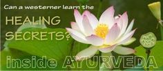 Inside Ayurveda - a welcomed online course for us. Best Honey, Best Online Courses, Ayurveda, Remedies, Healing, Canning, This Or That Questions, Plants, Home Remedies