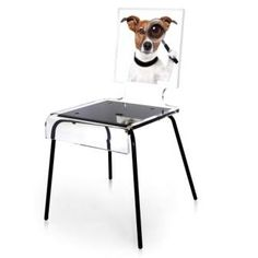 Graph Chair Dog / Acrila
