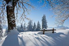 beautiful winter nature.