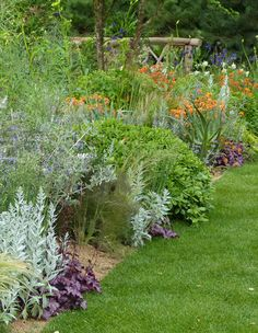 Sentebale garden at the Chelsea Flower Show. Repeat dark foliage, light foliage and orange geum