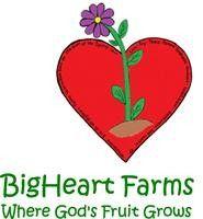 Big Heart Farms Vacation Bible School Apopka, FL #Kids #Events