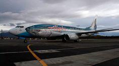 http://jalopnik.com/5954489/the-ten-coolest-commercial-jet-paint-jobs