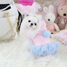 Pretty Dog Cat Warm Dress Clothes Vest Shirt Pet Princess Coat Hoody Skirt (S, Pink) Description: 1.Style: Pet Dog Dress 2.Color: Pink,Blue 3.Size:XS/S/M/L/XL 4.Material:Velvet Read  more http://dogpoundspot.com/dog-luxury-store-866/  Visit http://dogpoundspot.com for more dog review products