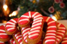 Christmas Dog Cookies!!!! Gourmet Dog Treats: Christmas Candy Cane with Grain-Free Pumpkin Recipe (Set of 10)
