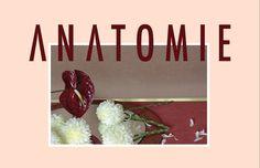ANATOMIE, duo of flower artist