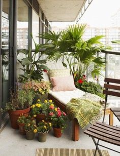 Small Patios, Porches & Balconies Urban Garden Balcony: An abundance of potted plants provides much needed privacy.Urban Garden Balcony: An abundance of potted plants provides much needed privacy. Decor, Small Balcony Garden, Home, Small Apartments, Porch And Balcony, Inspiring Outdoor Spaces