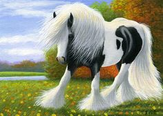 SEPTEMBER SPLENDOUR.....this gypsy horse is enjoying the splendour of a fall day....PRINTED