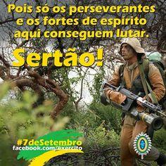 BRADO CONSULTORIA E SERVIÇOS LTDA.: SEMPRE PELO BRASIL