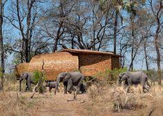 Dans le luxuriant Delta de l'Okavango au Botswana se trouve le standout Sandibe Okavango Safari Lodge, conçu en respectant environnement par les architectes Michaelis Boyd et Nick Plewman. Similar postsSandibe Okavango Safari LodgeSandibe Okavango Safari LodgeAttic – Vasiliy Butenko