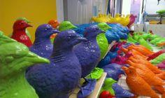 C'est à l'occasion du festival d'art contemporain à Liverpool, « The Liverpool Biennal« , que l'artiste Patrick Murphy a choisi de réaliser cette installation de plus de 150 pigeons colorés autour de la galerie d'art qui accueille le festival. Une manière de représenter cet animal d'une manière autrement qui est souvent considéré comme un nuisible envahisseur.
