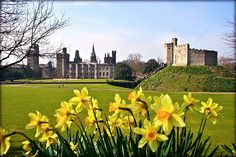http://www.remains.se  Cardiff Castle in Wales
