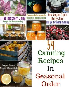 54 Canning Recipes In Seasonal Order - One Hundred Dollars a Month - Food: Veggie tables Pickled Corn, Pickled Beets, Home Canning Recipes, Canning 101, Canning Corn, Jelly Recipes, Jam Recipes, Cooker Recipes, Recipies