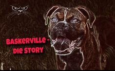 Devonshire und die Geschichte von Baskerville, von Dartmoor und von einem Neon-Hund https://www.frage-antwort-storytelling.de/reisen-1/baskerville-dartmoor/