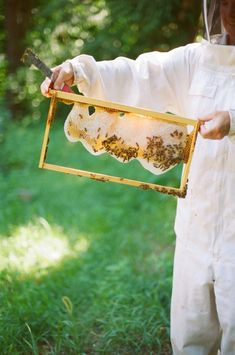 Find out the easiest way to start beekeeping in your own backyard with this tutorial from The Homegrown Paleo Cookbook! Beekeeping For Beginners, Beekeeping Equipment, Beekeeping Supplies, Raising Bees, Bee Boxes, Bee Farm, Paleo Cookbook, Backyard Beekeeping, Places In Europe