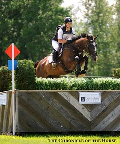 One To Watch: Leah Lang-Gluscic Will Represent OTTBs With AP Prime At Rolex Kentucky | The Chronicle of the Horse