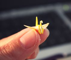"""""""Miniature Origami Japanese Crane Tutorial.""""   A mini that I probably can make, I've made cranes almost this small using little sticky note paper."""