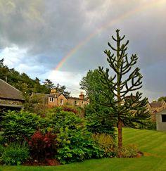 Late evening rainbow over the Craigatin House garden