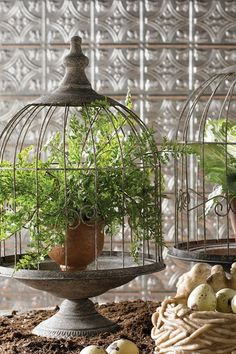 Bird Cages - Set of 2 by K and K International on @HauteLook