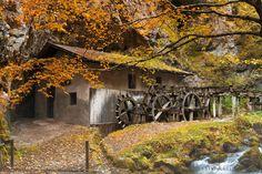 L'autunno al mulino di Fondo