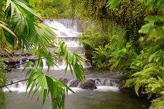 Tabacon Hot Springs - Arenal - Costa Rica