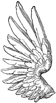 Google Image Result for http://waktattoos.com/large/Wings_tattoo_198.gif