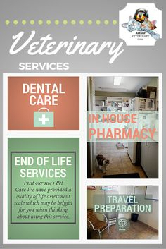 Some of our veterinary services and products that we offer. #dental #care #end #of #life #services #travel #preparation #inhouse #pharmacy #pet #animals #veterinary #vet #services #clinic #hospital