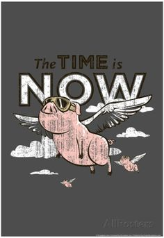 Pigs Flying Snorg Tees Plastic Sign by Ephemera Wall Signs Plastic Sign - 30 x 46 cm Unicorn Pig, Pig Art, Flying Pig, This Little Piggy, The Time Is Now, Sale Poster, Print Poster, Wall Art For Sale, Cool Posters