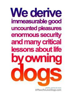 we derive immeasurable good