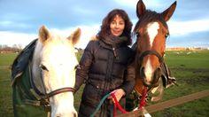 Madame Plug - Voilà mes chevaux. Je fais de l'endurance équestre avec le cheval brun. C'est un cours à vitesse de 25 km jusqu'à 160 km.
