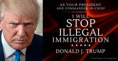 Vote Trump. Stop Illegal Immigration #americafirst