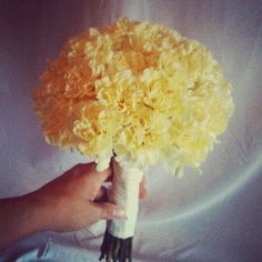Soft yellow carnation bouquet. With a lime green sash or black? What do you think, Ryan?