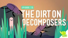 The Dirt on Decomposers: Crash Course Kids We've talked about food chains and how energy moves through an ecosystem, but let's take a step back and see how everything starts… and ends. Decomposer (Step Back Kids) Science Videos, Science Resources, Science Lessons, Science Activities, Life Science, Science Experiments, Food Chain Activities, Teaching Resources, Nature Activities
