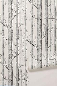 Woods Wallpaper #anthropologie