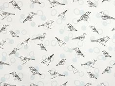 BIrds in Bubbles - Lisa Strachan  Dew and Shadow on White