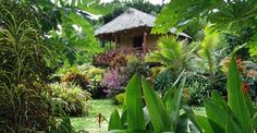 Tanna Evergreen Resort & Tours , Vanuatu