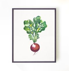 This is an 8x10 art print of my original watercolor painting - Radish. Make use of the BUY 2 GET 1 FREE offer to make a nice set!    SIZE  8x10 inches,
