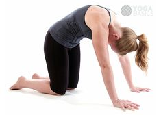 Photos, instructions, benefits, modifications and variations for practicing Cat Tilt Pose Pose.