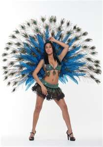 Deluxe Peacock Feathers - Womens Showgirl Costume Accessory