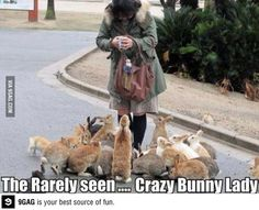 Crazy Bunny Lady - This is totally me.