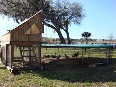 Chicken Trampoline Coop wonderfuldiy 1 Wonderful DIY Recycled Chicken Coops