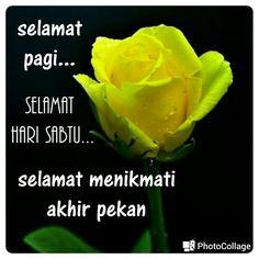 54 Best Sapaan Komen Menjemukan Di Whatsapp Images Humor