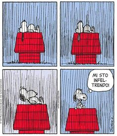 Snoopy Comics, Peanuts Comics, Fru Fru, Snoopy Love, Peanuts Snoopy, Cute Cards, Woodstock, Charlie Brown, Cool Words
