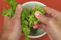 We've bred plants to taste better, be more productive, and be easier to harvest, store, and ship, but not to be more nutritious. Here's are some ways you can fix that. Since man first figured out how to domesticate plants we've been trying to make them more palatable. Most edible wild plants are too bitter, […]