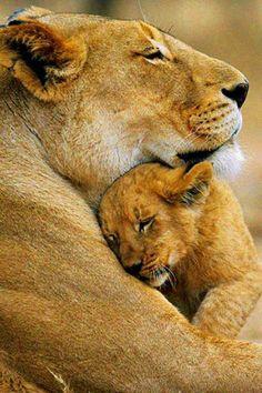 leona y su bebe