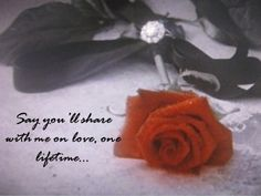 """Line in Phantom of the Opera... """"Say you'll share with me one love, one lifetime."""""""