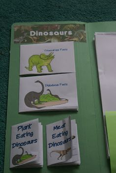 Practically Penniless: Dinosaur lapbook