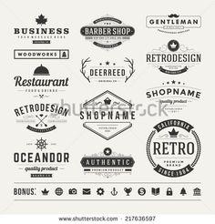 Retro Vintage Insignias or Logotypes set. Vector design elements, business…
